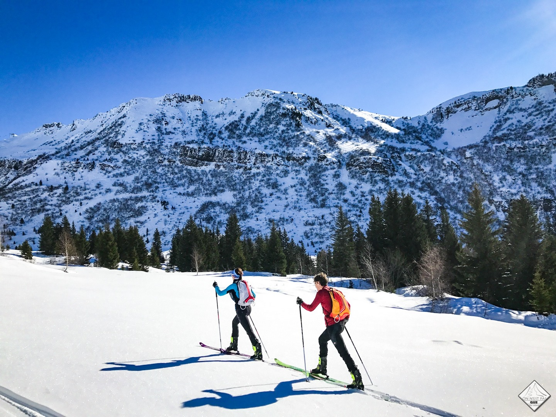 comment choisir ses peaux de phoque pour ski de randonnée