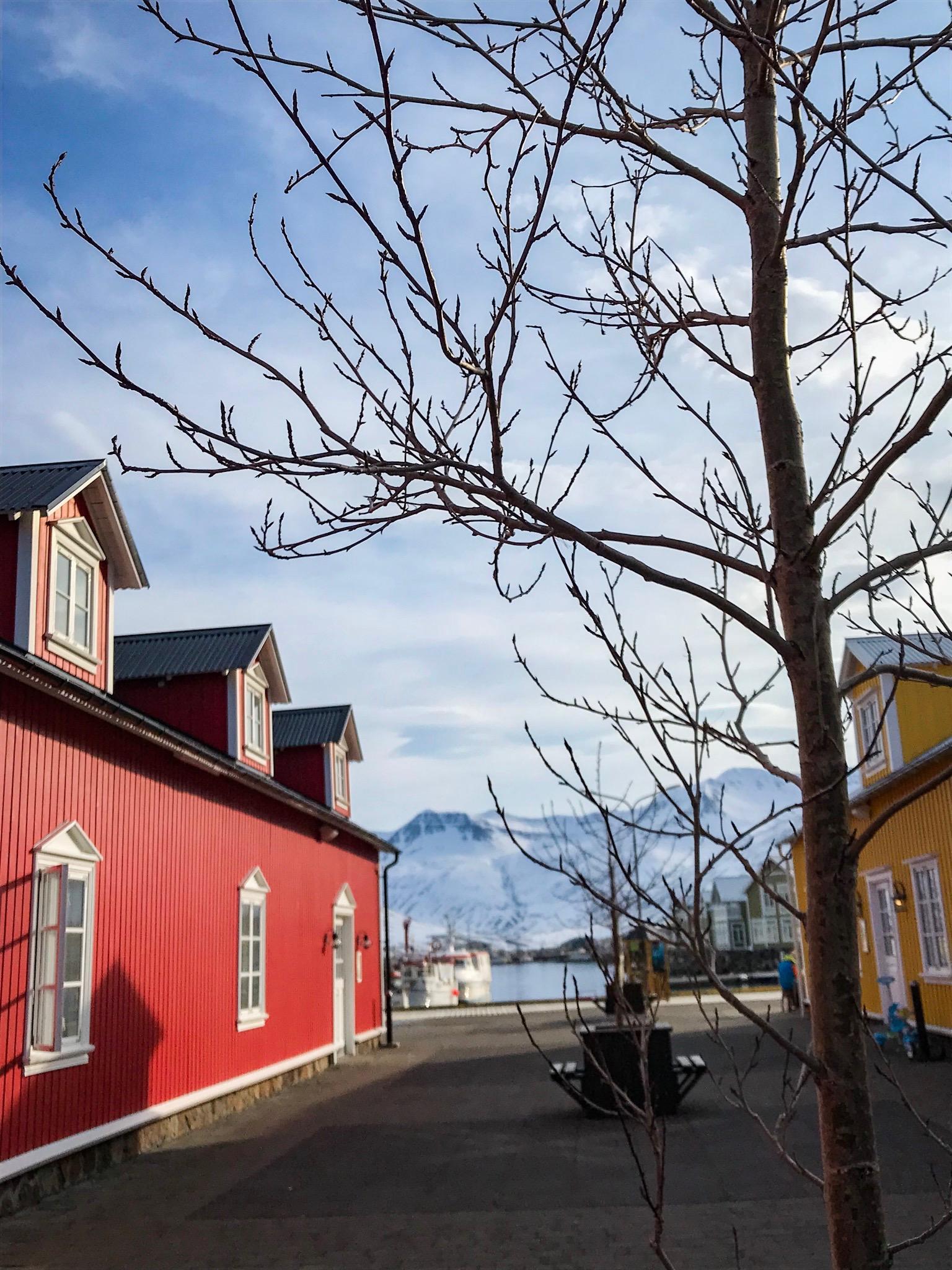 Islande On n est pas que des collants IMG_1453 voyage ski de rando peninsule des trolls blog brasserie seagull 67 siglufjordhur